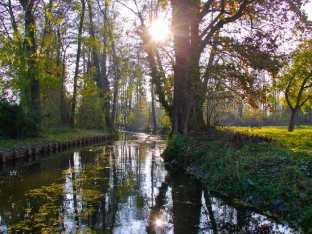 Sonnenaufgang am Fließ