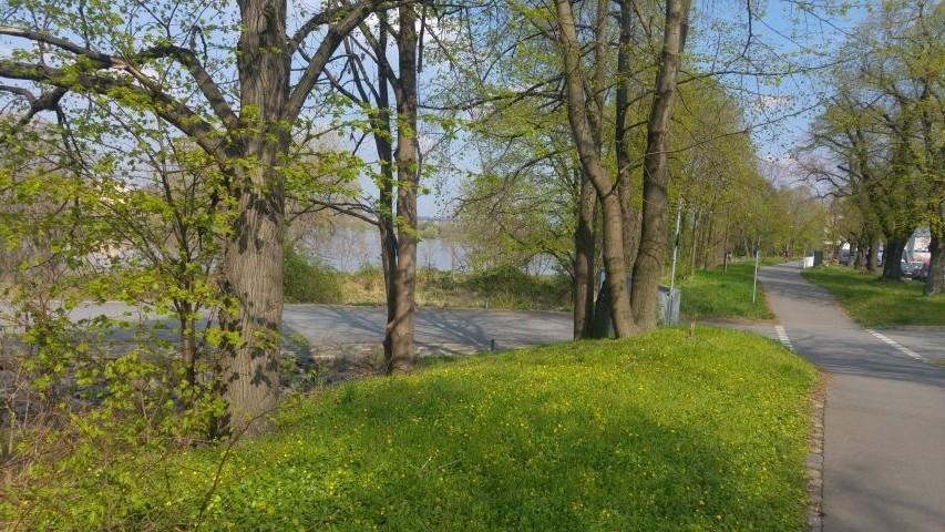 Linksseitiger Elberadweg