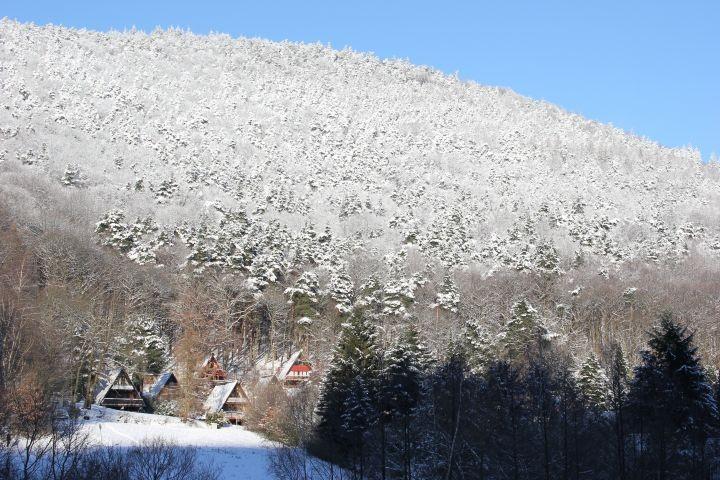 Winter in Leinsweiler
