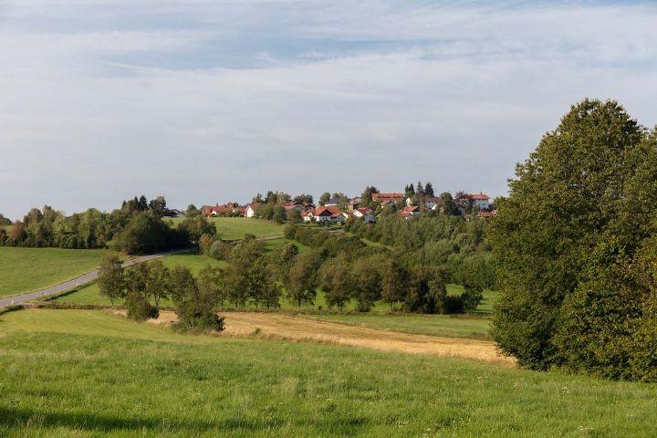 Blick vom Haus auf Hohenau