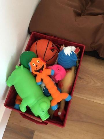 Spielzeug muss sein