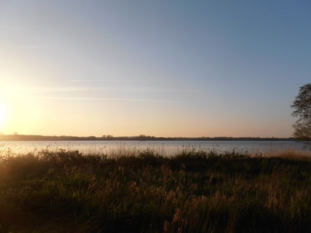 Sonnenuntergang am Wittensee