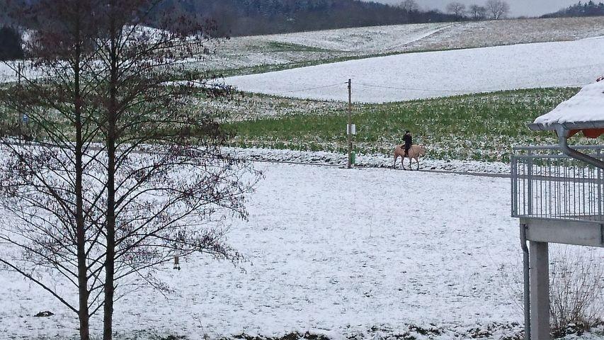 Ausblick im Winter aus dem Garten