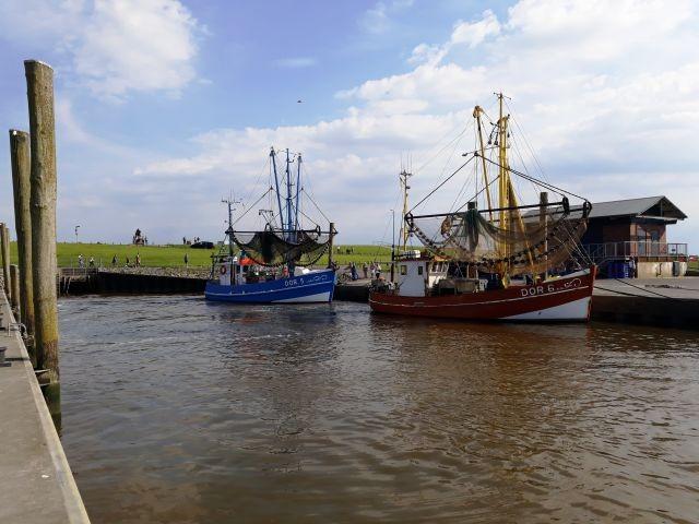 Kutterhafen