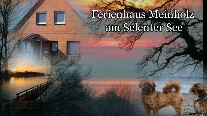 Ferienhaus Meinholz am Selenter See