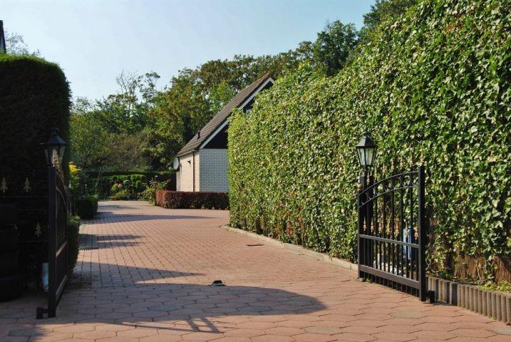 Zomerhof in Ouddorp - Einfahrt zum Haus
