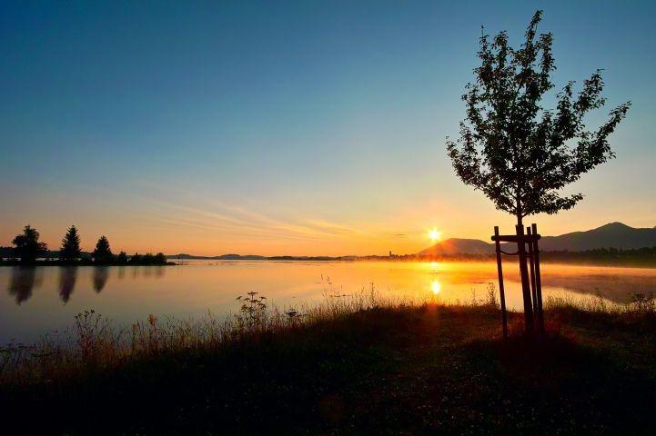 Sonnenaufgang Forggensee