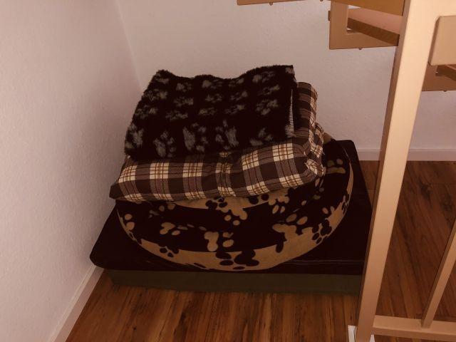 Hundebetten und Hundedecken für Ihre Fellnase