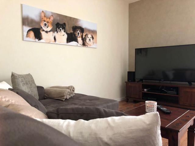 gemütliches Sofa mit TV