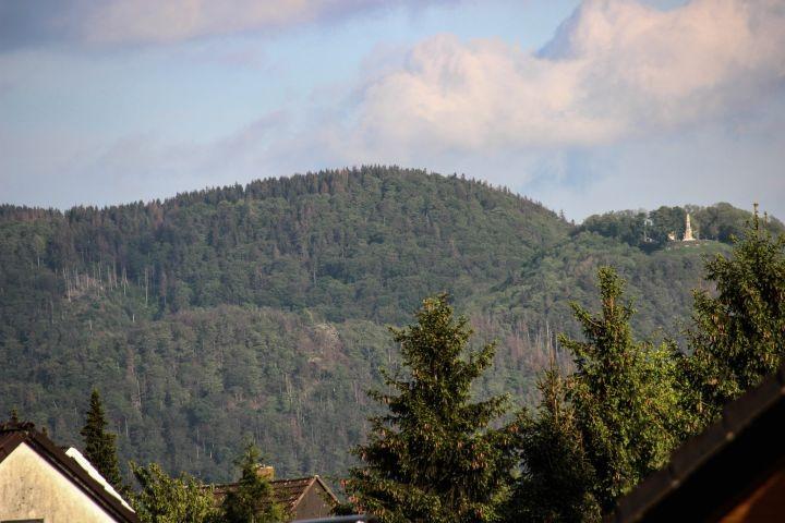 Blick Richtung Osten; Burgberg