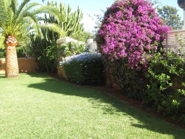 900 qm großer mediterraner komplett eingezäunter und uneinsehbarer Garten