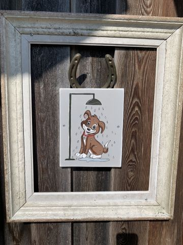 Warme Hunde-Außendusche