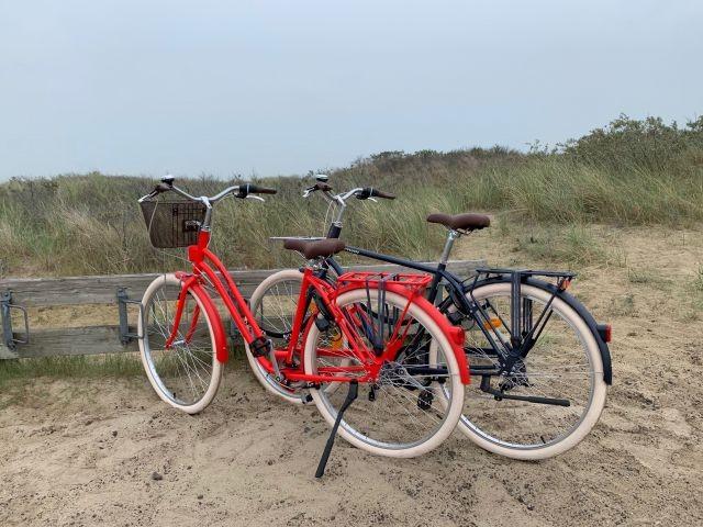 2 Fahrräder stehen Ihnen zur Verfügung