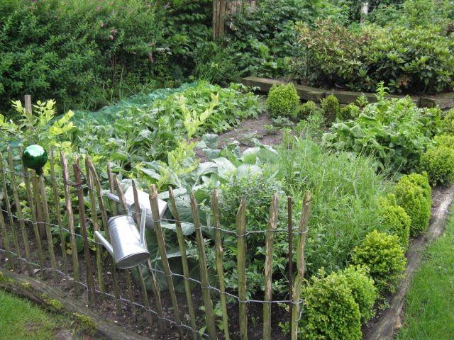 Nutzen Sie in der Saison gern die Früchte und das Gemüse des Gartens