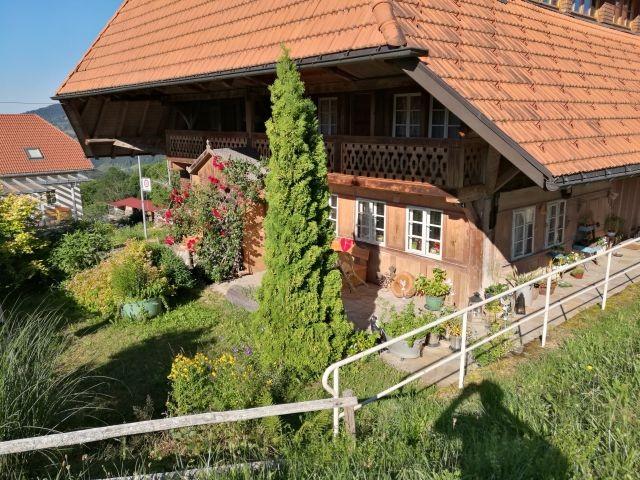 Unser Schwarzwaldhaus im Sommer