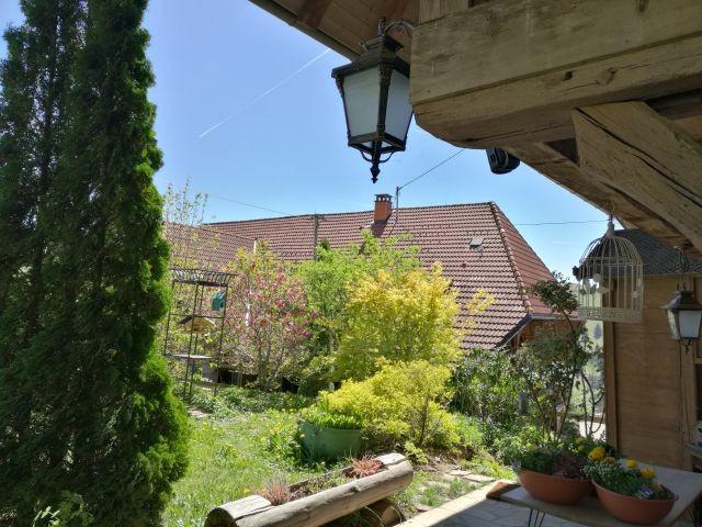 Sonnige Aussichten auf der Terrasse
