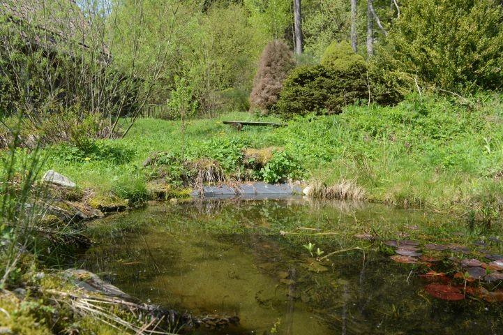 Der Teich zum Planschen an heißen Tagen