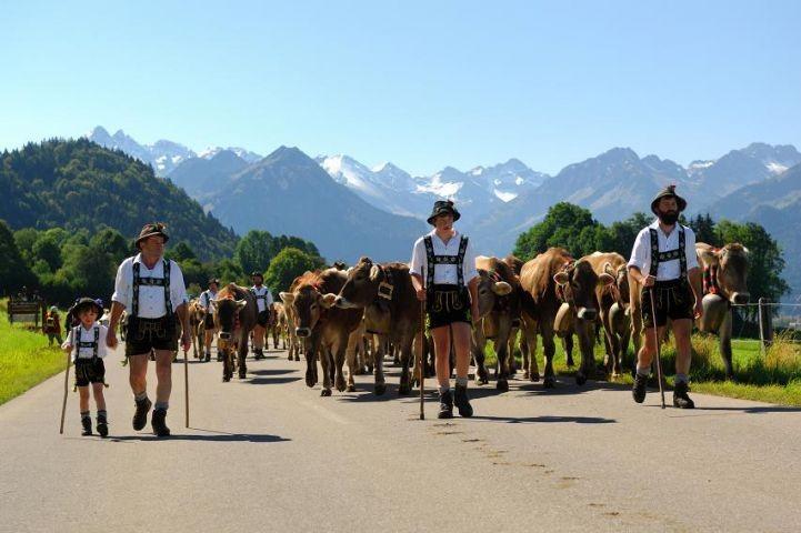 mit dem Viehscheid endet der Bergsommer