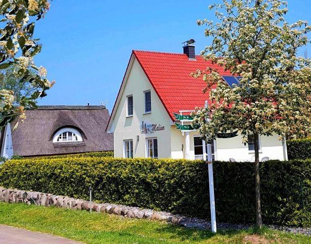 Ferienhaus Malino im Frühling