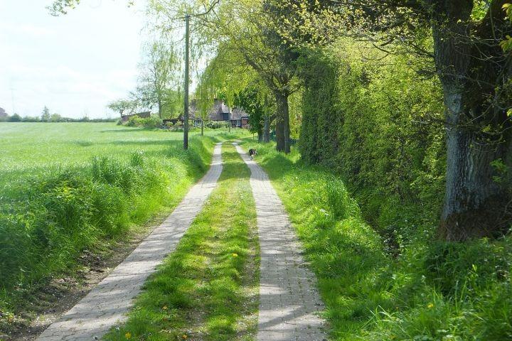 Feldweg am Haus