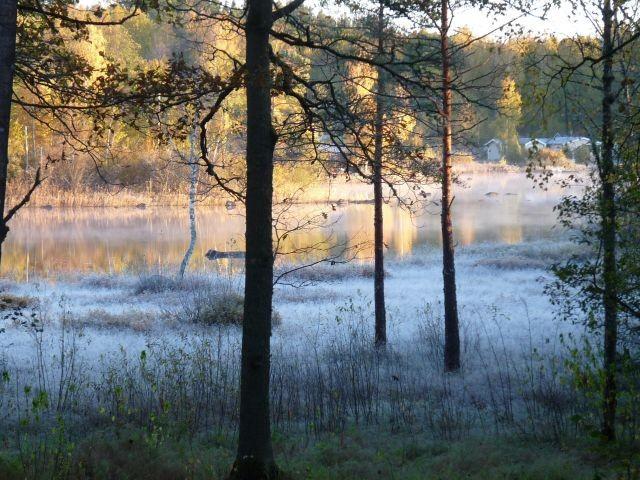 Blick vom Haus aus früh am Morgen