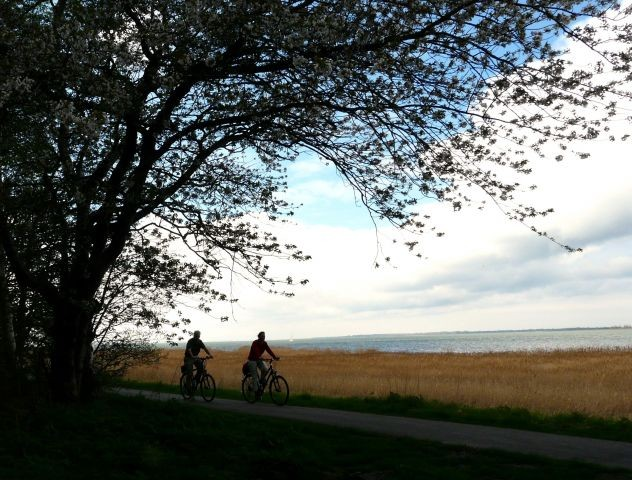 Ostseeradweg auf dem Damm bei Nisdorf