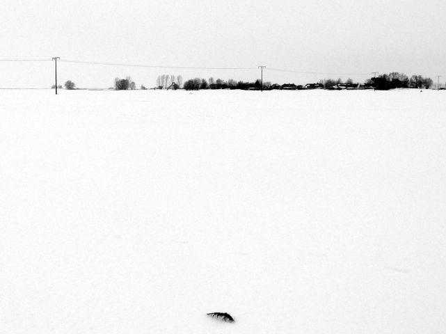 Unser Dorf in Schneewintern