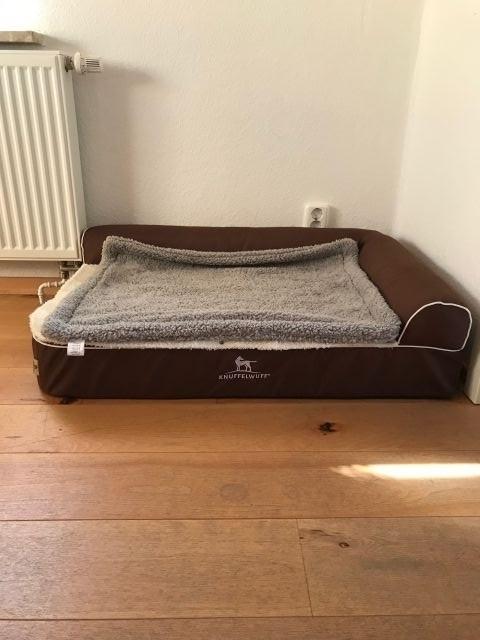 das gemütliche Bett für Ihre Fellnase im Wohnzimmer