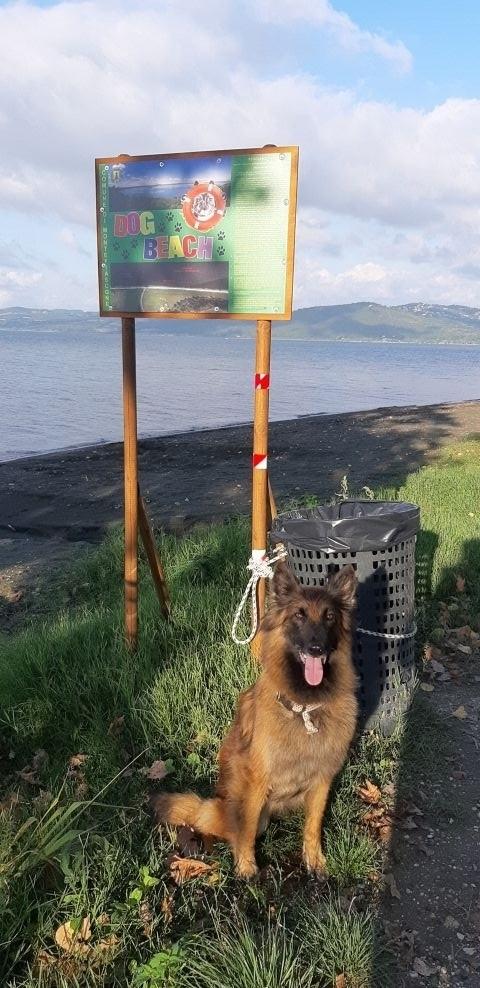 herrliche Hundestrände