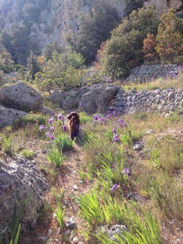 Wandern im Biokovo