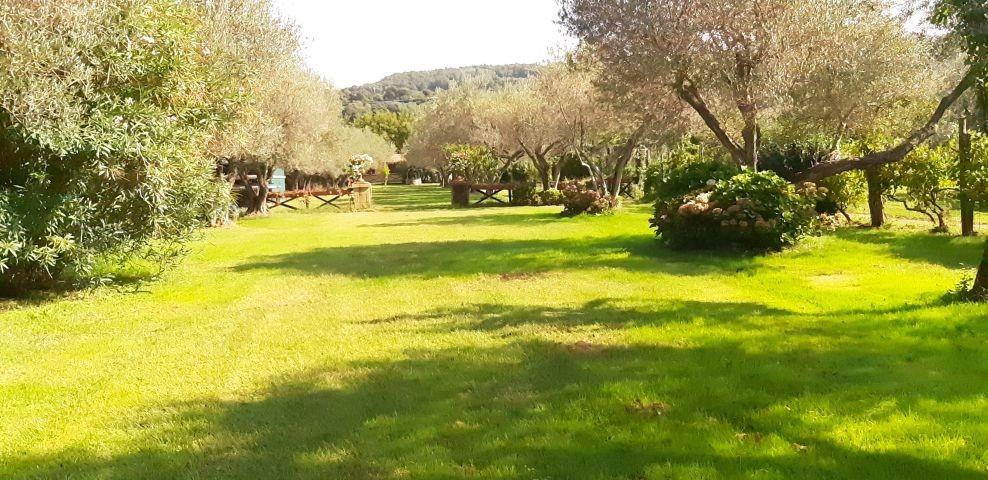 der riesige eingezäunte Garten