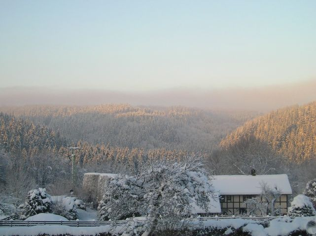 Widdau im Winter