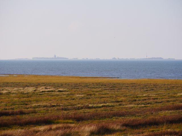 Die Salzwiesen und die Insel Neuwerk, direkt vor der Robbenplate Duhnen