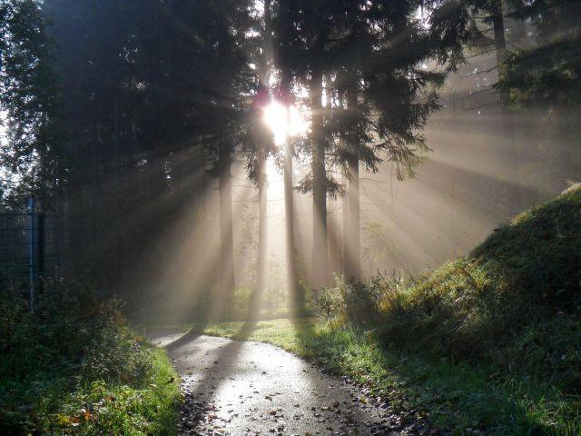 Die Sonne zaubert