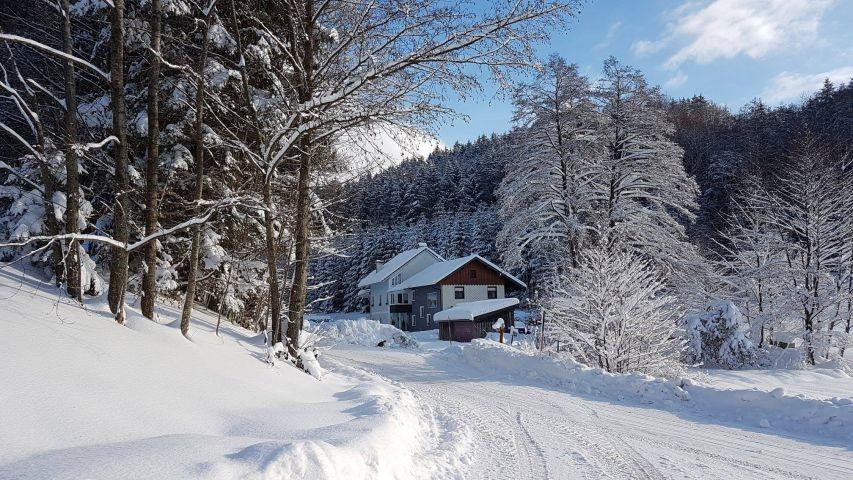 Zur Winterzeit kuschelig