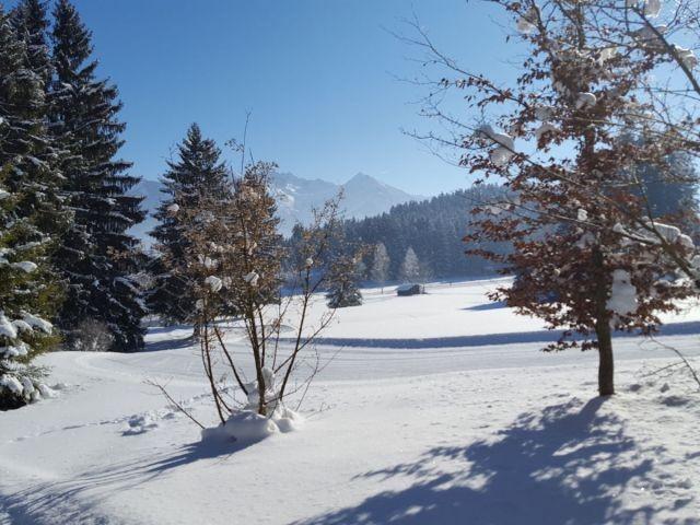 Winterwanderwege rund ums Haus