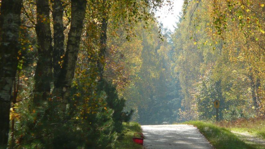 Der Bikrenweg Richtung Dago