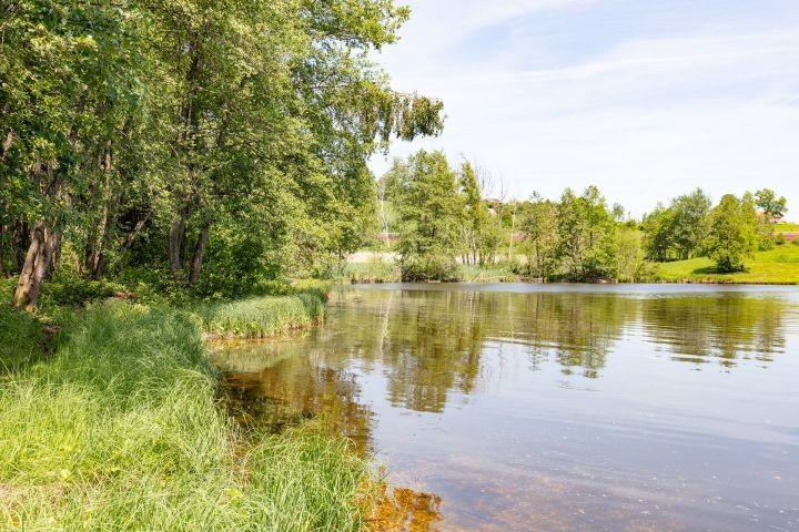 Badesee bei Hohenau