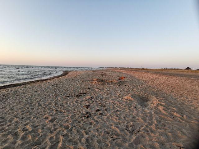 Weidefelder Strand Richtung Schönhagen