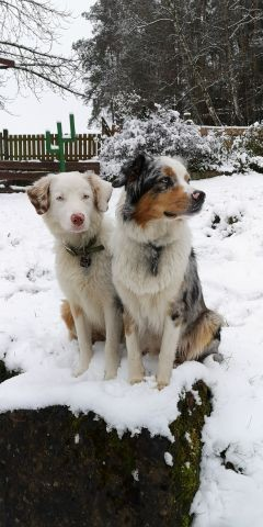 Auch im Winter ein Besuch wert!