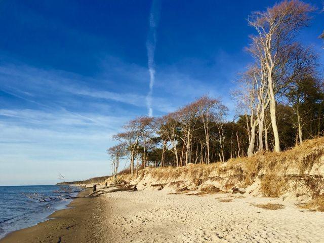 Ostseeküste in Wüstrow