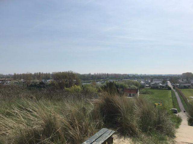 Blick vom Deich auf den Park