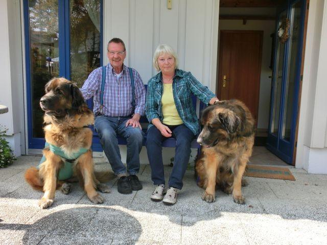Unsere bisher größten Gästehunde