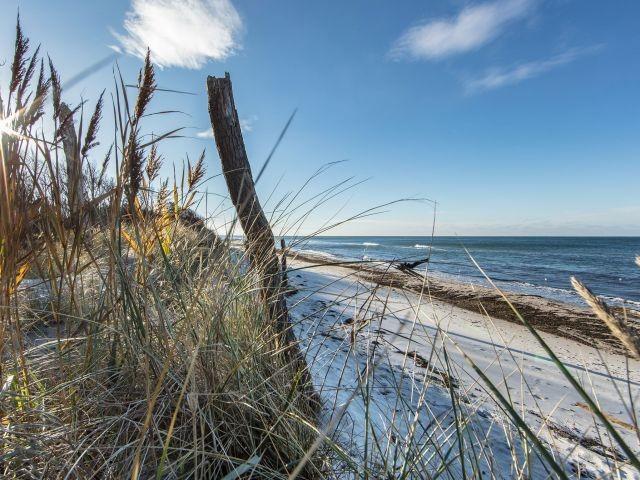 Der feinsandige Strand der Ostsee
