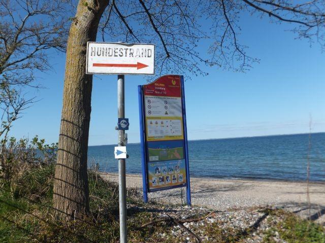 Strand Wegweiser
