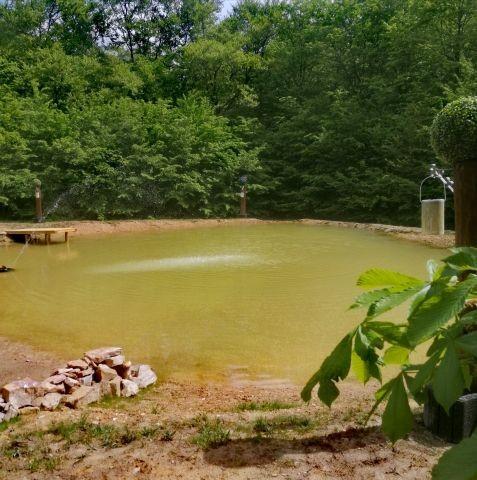 Neu! Auf dem Hundespielplatz ist ein 21 x 15 Meter großer Natur/Hundebadeteich mit fließendem Wasser gestaltet!