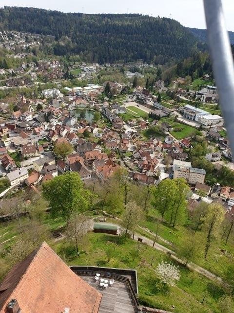 Blick auf Bad Liebenzell von der Burg