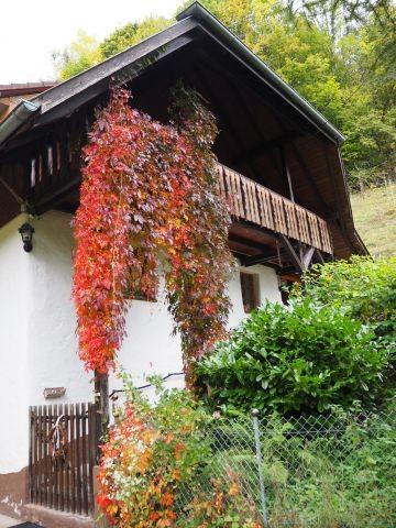 Eichehüsli im Herbst