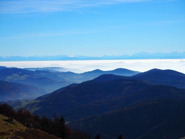 Alpensicht auf dem Belchen