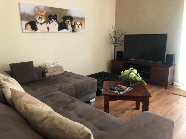 Fernsehecke mit gemütlichem Hundebettchen